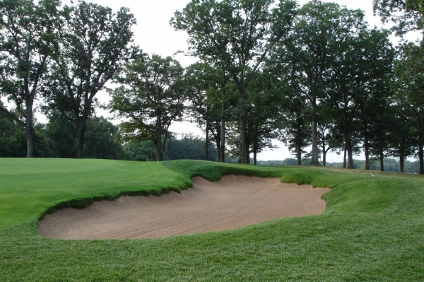 Old Elm Hole 10